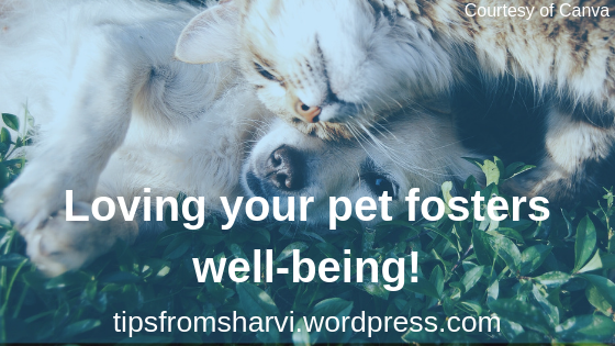 Courtesy of Canva. Loving your pet fosters well-being, Tips from Sharvi.